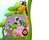 Desenhos animados animais bonitos dos animais selvagens com fundo da floresta Foto de Stock
