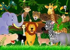 Desenhos animados animais bonitos na selva Imagem de Stock