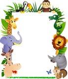 Desenhos animados animais e espaço em branco branco Imagens de Stock Royalty Free