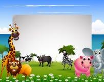 Desenhos animados animais engraçados com fundo da praia e sinal vazio Fotos de Stock Royalty Free