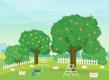 Desenhos animados Autumn Rural Garden Outdoor Scene Vetor ilustração stock