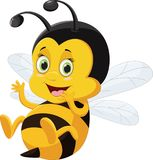 Desenhos animados bonitos da abelha isolados no fundo branco Foto de Stock Royalty Free