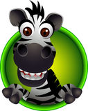 Desenhos animados bonitos da cabeça da zebra Fotos de Stock