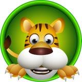 Desenhos animados bonitos da cabeça do tigre Imagens de Stock