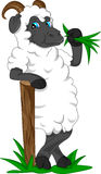 Desenhos animados bonitos da cabra Foto de Stock Royalty Free