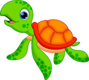 Desenhos animados bonitos da tartaruga ilustração do vetor
