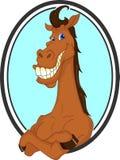 Desenhos animados bonitos do cavalo Fotos de Stock