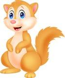 Desenhos animados bonitos do esquilo Foto de Stock