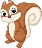 Desenhos animados bonitos do esquilo Imagens de Stock Royalty Free