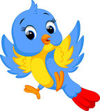 Desenhos animados bonitos do pássaro Foto de Stock Royalty Free