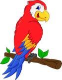 Desenhos animados bonitos do pássaro do macaw Foto de Stock
