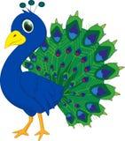 Desenhos animados bonitos do pavão Fotos de Stock