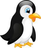 Desenhos animados bonitos do pinguim Imagem de Stock