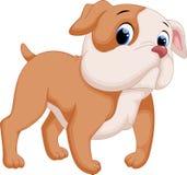 Desenhos animados bonitos do pitbull do bebê Imagem de Stock