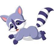 Desenhos animados bonitos do raccoon Fotografia de Stock Royalty Free