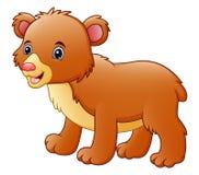 desenhos animados bonitos do urso Fotografia de Stock