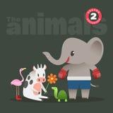 Desenhos animados bonitos dos animais que incluem o pássaro do flamingo da tartaruga da vaca do elefante Foto de Stock