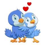 Desenhos animados bonitos dos pares dos pássaros ilustração stock