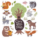Desenhos animados bonitos e animais selvagens da floresta e elementos florais da floresta no grupo branco do vetor Imagens de Stock Royalty Free
