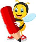 Desenhos animados da abelha que guardam o lápis vermelho Imagem de Stock