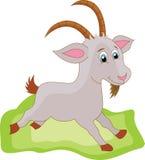 Desenhos animados da cabra Imagem de Stock Royalty Free