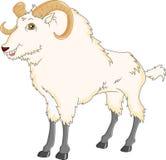 Desenhos animados da cabra Foto de Stock Royalty Free