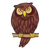 Desenhos animados da coruja ilustração do vetor