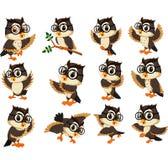 Desenhos animados da coruja Imagem de Stock