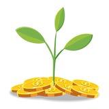 Desenhos animados da moeda da finança da árvore Ilustração do Vetor