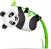 Desenhos animados da panda Foto de Stock Royalty Free