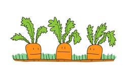 Desenhos animados das cenouras ilustração royalty free