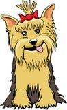 Desenhos animados de Yorkie Fotos de Stock Royalty Free