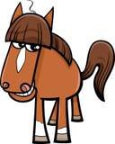 Desenhos animados do animal de exploração agrícola do cavalo Imagens de Stock