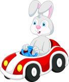 Desenhos animados do coelho que conduzem o carro Imagem de Stock Royalty Free