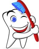 Desenhos animados do dente Fotografia de Stock