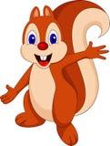Desenhos animados do esquilo ilustração stock