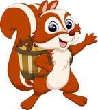 Desenhos animados do esquilo com porca Fotos de Stock