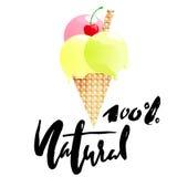 Desenhos animados do gelado com 100 por cento de rotulação natural Imagens de Stock