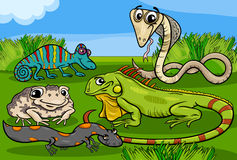 Desenhos animados do grupo dos répteis e dos anfíbios ilustração royalty free
