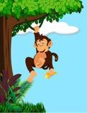 Desenhos animados do macaco ilustração stock