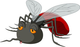 Desenhos animados do mosquito ilustração royalty free