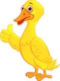 Desenhos animados do pato Fotos de Stock