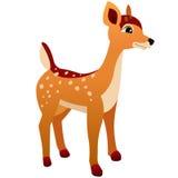 Desenhos animados dos cervos Foto de Stock Royalty Free