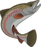Desenhos animados dos peixes da truta Foto de Stock Royalty Free