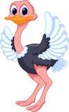 Desenhos animados engraçados da avestruz ilustração royalty free