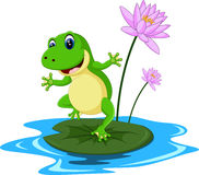 Desenhos animados engraçados da rã verde Fotografia de Stock Royalty Free