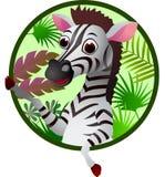 Desenhos animados engraçados da zebra Foto de Stock Royalty Free