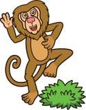 Desenhos animados engraçados do babuíno Imagens de Stock