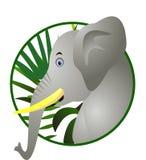 Desenhos animados engraçados do elefante Imagem de Stock