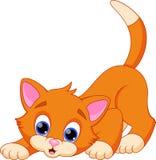 Desenhos animados engraçados do gato ilustração royalty free